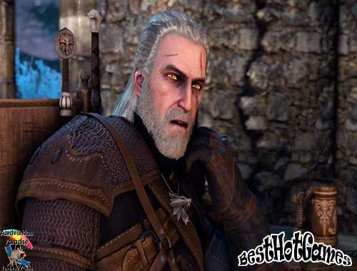The Witcher-action rapide